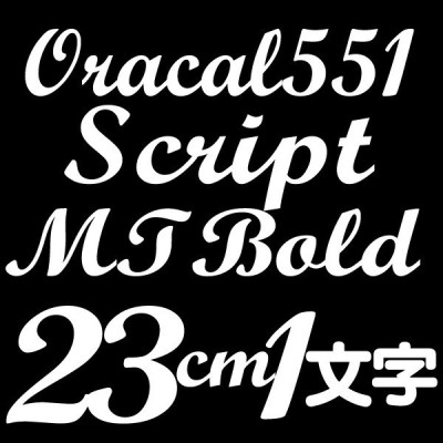 23センチ ScriptMTBold Oracal551 デカール 切文字シール カッティングシール カッティングステッカー マーキングフィルム カッティングデカール
