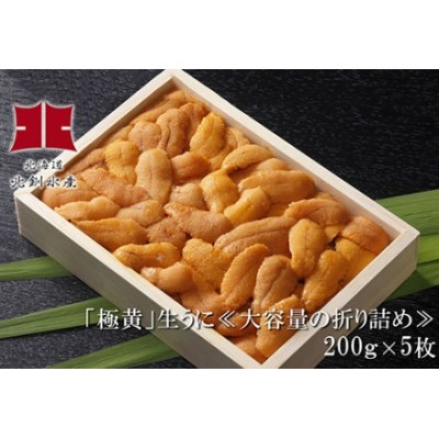 [Ho205-F025]「極黄」生うに≪大容量の折り詰め≫200g5枚セット
