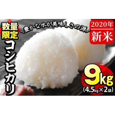 a3-006 【米の匠】川崎さん自慢のコシヒカリ計9kg(4.5kg×2袋)