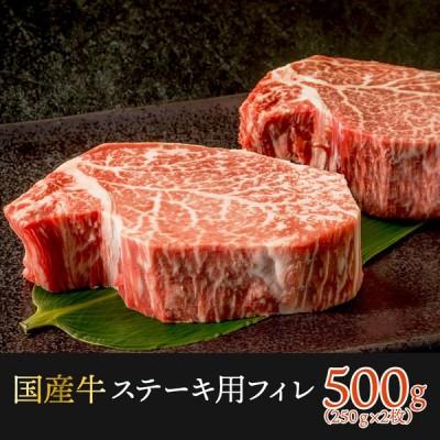 フィレステーキ  500g  250gx2枚 2人前 牛肉 ステーキ肉 牛ヒレ 肉 フィレ肉  ヒレ肉 フィレ ヘレ ステーキ  送料無