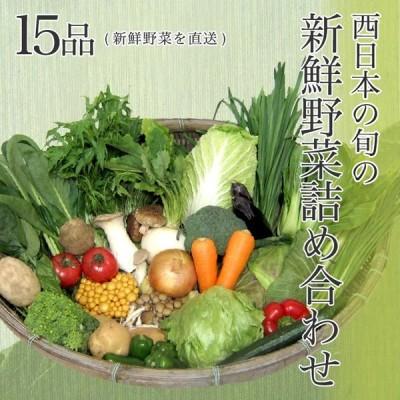 【送料無料】西日本産の旬の新鮮野菜詰め合わせ 15品 新鮮野菜を直送野菜セット 野菜詰め合わせ 新鮮野菜 旬の野菜 季節の野菜 やさい 詰め合わせ セット お取り