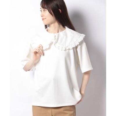 (ehka sopo/エヘカソポ)【ehka sopo】衿付Tシャツ/レディース オフ