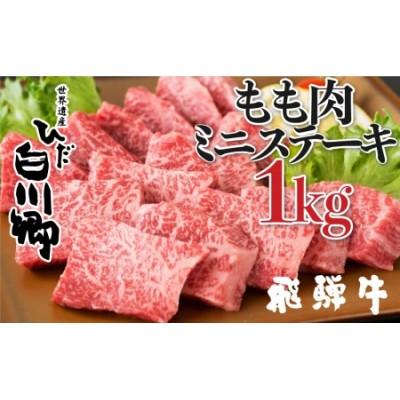 飛騨牛 ミニステーキ もも肉 1kg JAひだ ミニステーキ お中元 お歳暮 ギフト[S111]