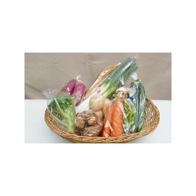 ふるさと納税 季節の野菜セットB 茨城県守谷市