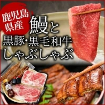 e0-023 鹿児島自慢3点セット(うなぎ・黒毛和牛しゃぶ肉・黒豚しゃぶ肉)合計約1.1kg