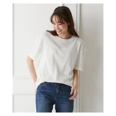 Tシャツ カットソー 大きいサイズ レディース 後ファスナー使い プルオーバー LL/3L ニッセン