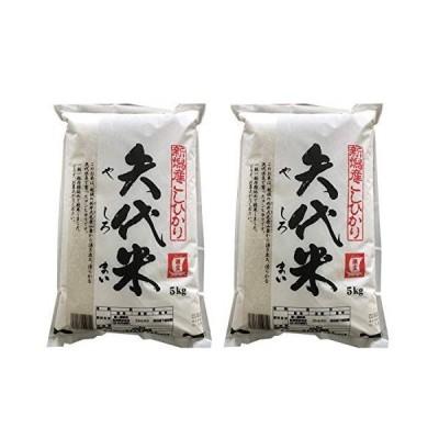 潮宝 矢代米(新潟こしひかり) 5kg×2袋<精米>