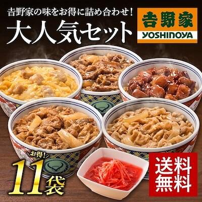 公式販売店 新大人気セット 6品 11袋セット(牛丼豚丼牛焼肉親子丼焼鶏紅生姜) 冷凍