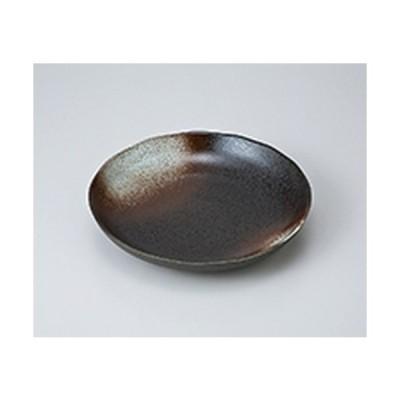 和風パスタ皿 洋食器 / 白吹天目パスタ皿 寸法:22.3 x 4cm
