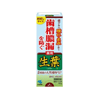 小林製薬/生葉(しょうよう)b40g
