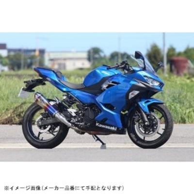 [RK33-03RD] r's gear(アールズギア) リアルスペック S/O タイプR DB Ninja250 18-/Z250 19-