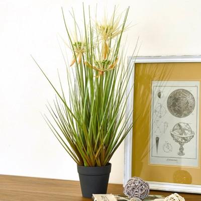 オシャレで枯れない人工観葉植物 サニーグラス サイズ53cm  萩原 [光触媒加工 消臭 抗菌 防汚 臭いを分解 フェイクグリーン]