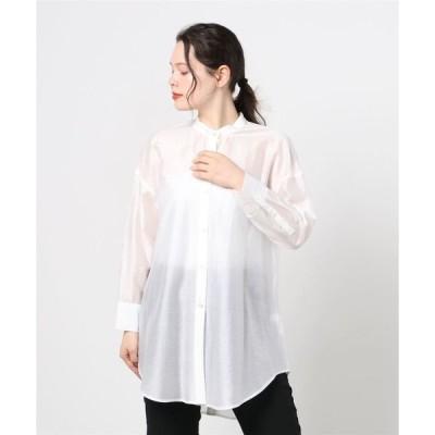 シャツ ブラウス バックデザインシアーシャツ