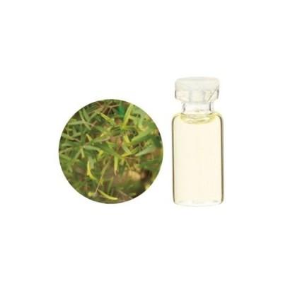 レモンティートゥリー精油 50ml Lemon tea tree 084343510 生活の木