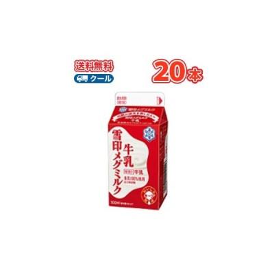 雪印 メグミルク 雪印メグミルク牛乳【500ml×20本入】 クール便 送料無料 〔雪印 メグミルク クール便 乳製品 牛乳〕