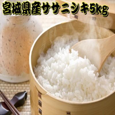 新米 5kg 白米 ササニシキ 一等米 宮城県産 令和2年産 5kg×1袋
