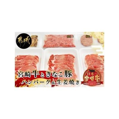 ふるさと納税 宮崎牛と「きなこ豚」ハンバーグ&生姜焼きセット_AC-4407 宮崎県都城市