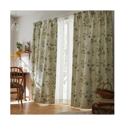 【送料無料!】水彩タッチがおしゃれな木の実柄遮光カーテン ドレープカーテン(遮光あり・なし) Curtains, blackout curtains, thermal curtains, Drape(ニッセン、nissen)