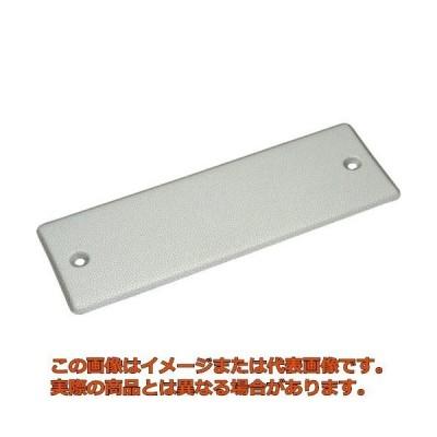 NT ドレッサー替刃荒目 L431P