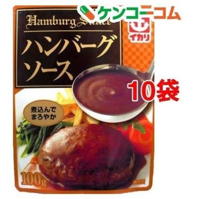 イカリ ハンバーグソース パウチ ( 100g*10袋セット )