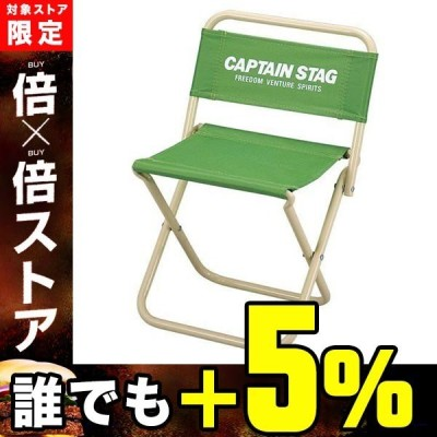 CAPTAIN STAG キャプテンスタッグ パレット レジャーチェア <中>  ライトグリーン  M3924