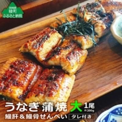 65-01_うなぎ蒲焼(大)1尾