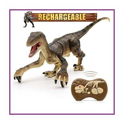 Hot Bee Remote Control Dinosaur Toys, Walking Robot Dinosaur w/ LED Light Up & Roaring 2.4Ghz Simulation Velociraptor RC Dinosaur Toys for K