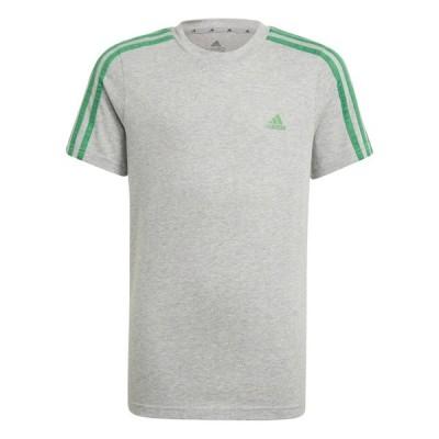 アディダス(adidas)  Tシャツ 半袖 ADIDAS BOYS ESSENTIALS 3 STRIPES TEE GN3998 29253