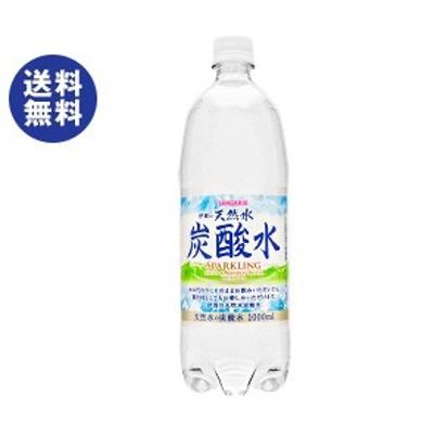 送料無料  サンガリア  伊賀の天然水 炭酸水  1Lペットボトル×12本入