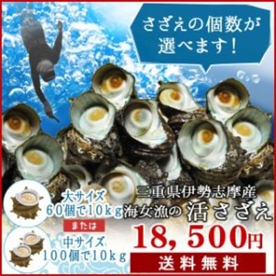 三重県 伊勢志摩産 海女漁 天然 活 さざえ 10kg 送料無料 サザエのサイズと個数が選べます お中元 ギフト
