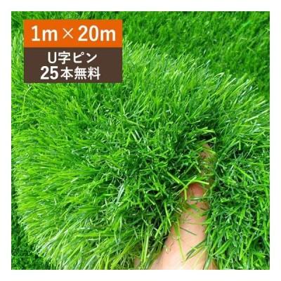 人工芝 1m×20m ロール 庭 芝丈35mm 人工芝マット 芝生 密度2倍 高耐久 固定ピン25本付 1年保証付き