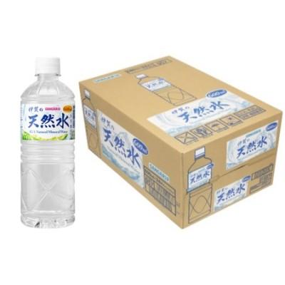 サンガリア伊賀の天然水 (600ml×2ケース)
