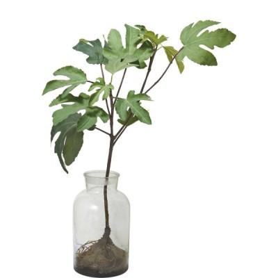 人工観葉植物 YDM ボタニカルパンノキ グリーン GLA-1475-GR 人工観葉植物 高さ〜100cm