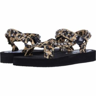 スティーブ マデン Steve Madden レディース サンダル・ミュール スポーツサンダル シューズ・靴 Henley-R Sport Sandal Leopard