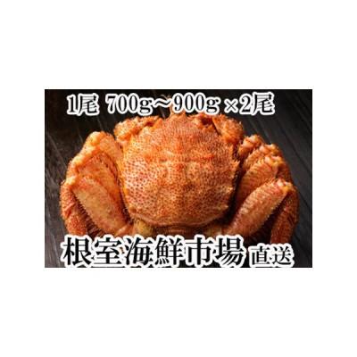 ふるさと納税 根室海鮮市場<直送>ボイル毛がに700〜900g×2尾 C-28005 北海道根室市
