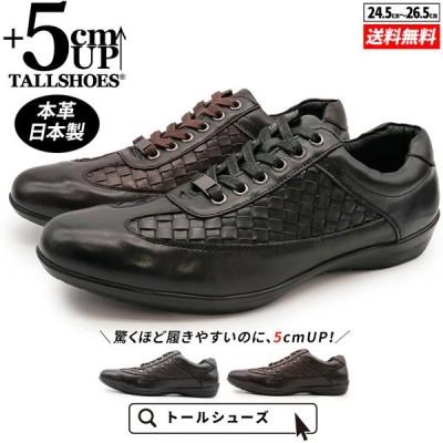 シークレットシューズ スニーカー メンズ 5cm 身長アップ 靴 本革 日本製 幅広 3E 大きめ レザーメッシュ 紐 2020 秋 冬 プレゼント トールシューズ DH107
