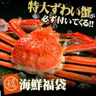 ジャンボズワイガニ姿900gが必ず入った福袋セット 海鮮福袋 北海道 海鮮 セット プレゼント 海鮮ギフト 海鮮 詰め合わせ 訳あり じゃない