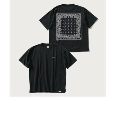 【SHIPS別注】ELEPHANT BRAND: バンダナ ロゴ Tシャツ