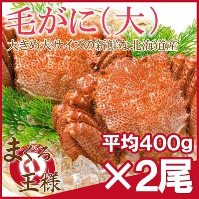 毛ガニ 毛がに 毛蟹 浜茹で 毛ガニ姿 平均400g前後×2尾 セット かに カニ 蟹 かに鍋 焼きガニ