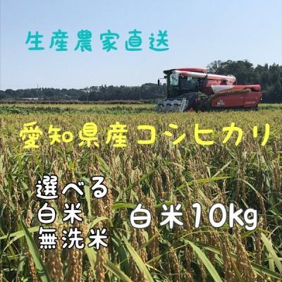 令和3年産 コシヒカリ 10kg 愛知県産 選べる 白米 無洗米 生産農家直送