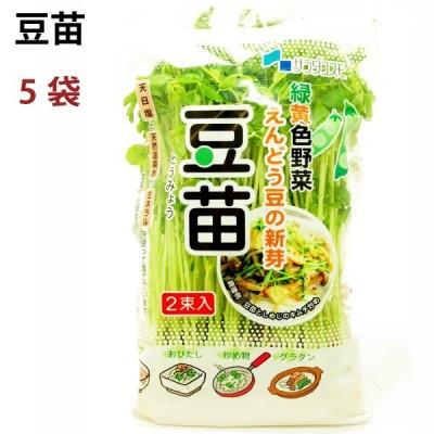 豆苗 8パック 長野県産 農薬 化学肥料不使用  送料込
