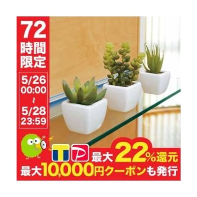 多肉植物3点セット 人工 観葉植物 人工観葉植物 造花 光触媒 インテリア ギフト プレゼント 人気アイテム 231B42-40