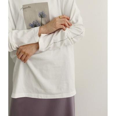 【ロペ マドモアゼル/ROPE mademoiselle】 【新色追加】【VARIOUS TIMELESS ARTS】別注フラワーフォトTシャツ