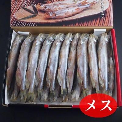 本ししゃも メス(北海道産) 20尾 冷凍便