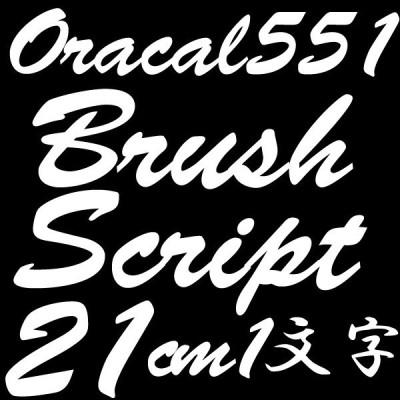 21センチ BrushScript オラカル551 デカール 切文字シール カッティングシール カッティングステッカー マーキングフィルム カッティングデカール