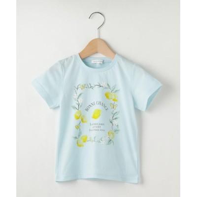 3can4on(Kids)(サンカンシオン(キッズ)) 【100-150cm】レモンプリントTシャツ