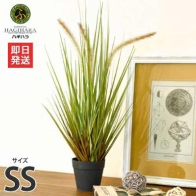 ハギハラ 人工観葉植物 キャッツテールグラス #1713 (SS/53cm)