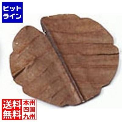 干朴葉懐敷(枯)100枚入25992 丸型(小) QHO1402