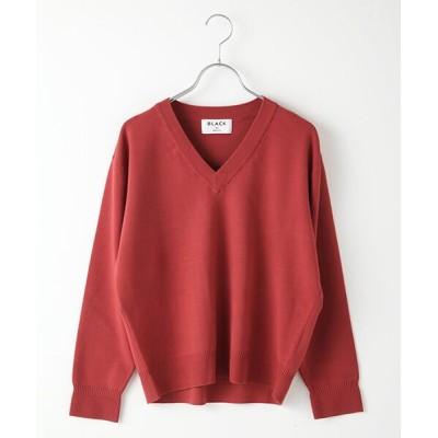 DENIM STYLE LAB/デニムスタイルラボ washable V knit tops ボルドー F