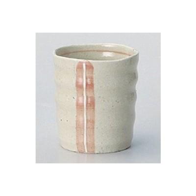 和食器 / 酒器 ピンクライン焼酎カップ 寸法:8.6 x 9.5cm 300cc